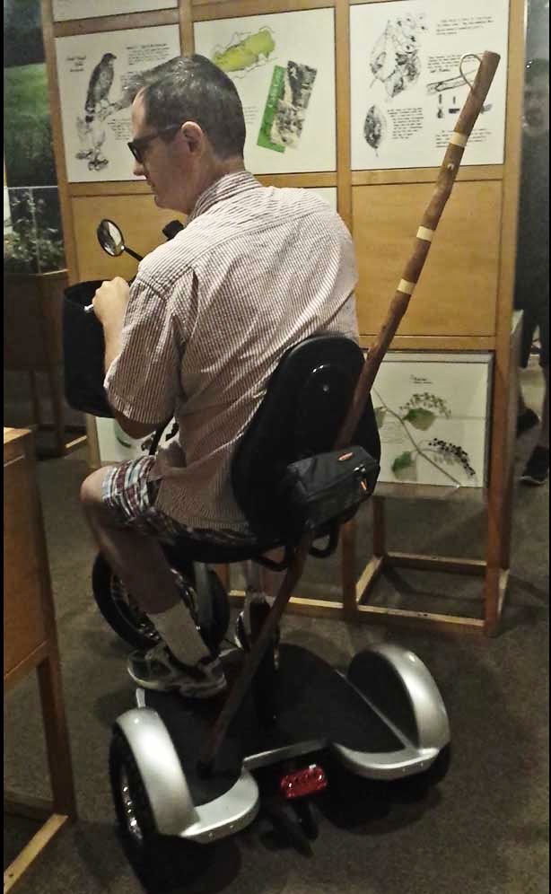 A scooter with a walking stick at a museum.